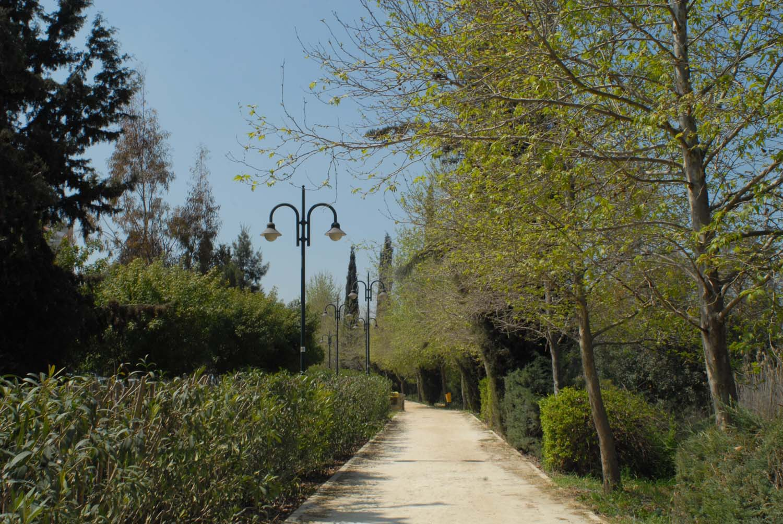parks_pediaios_02