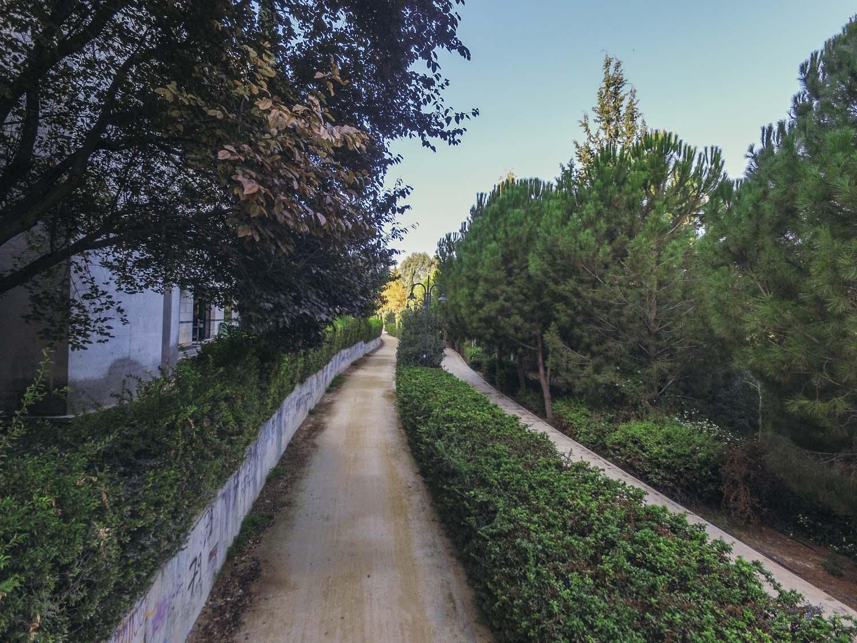 parks_pediaios_03