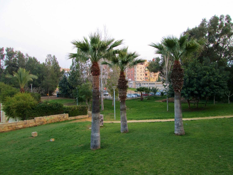 parks_akropolis_11