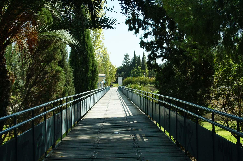 parks_akropolis_12