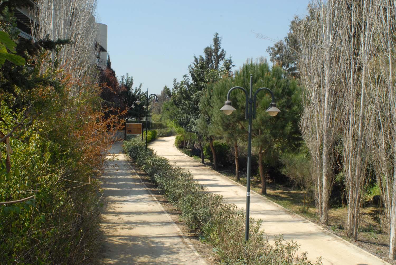 parks_pediaios_01